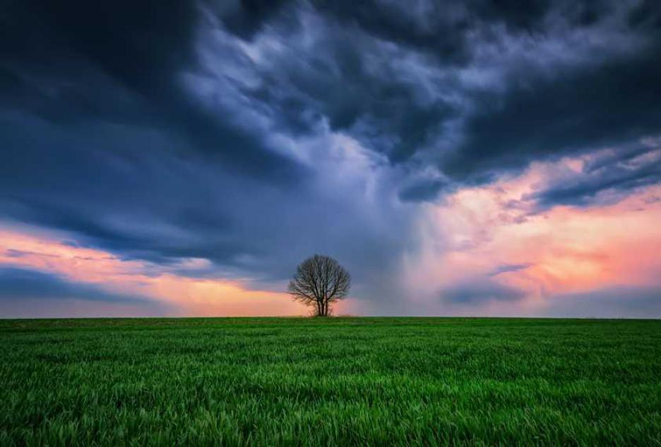 Сам в бурята
